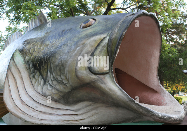 Big mouth bass stock photos big mouth bass stock images for Big mouth fish
