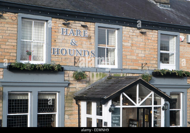 Hare and hounds stock photos