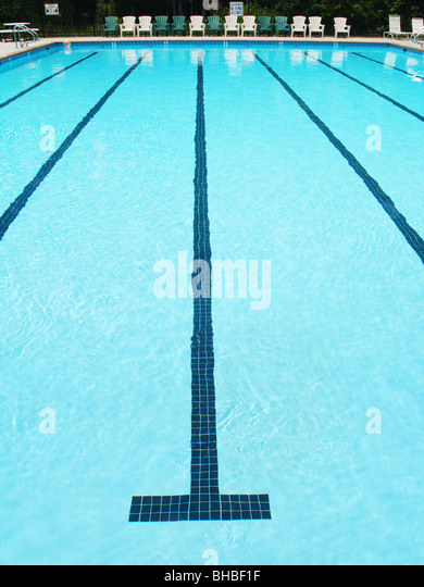 olympic sized swimming pool lane with stripe on the bottom stock image
