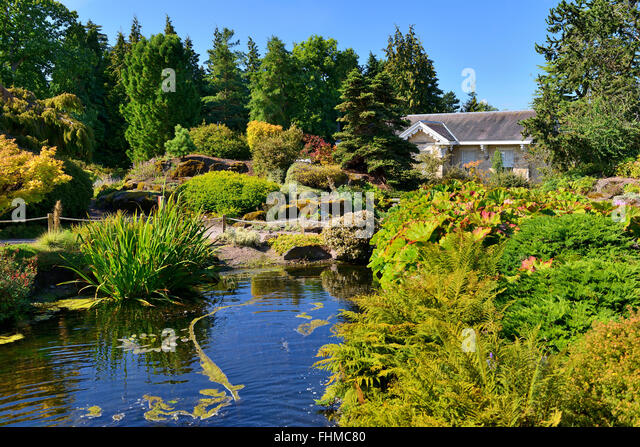 Gentil Rock Garden And Pond, Royal Botanic Garden, Edinburgh, Scotland, UK   Stock