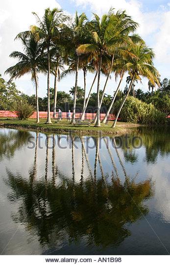Fairchild Botanic Garden Miami Stock Photos Fairchild