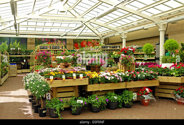 A gardening shop stock photos a gardening shop stock for Garden trees homebase