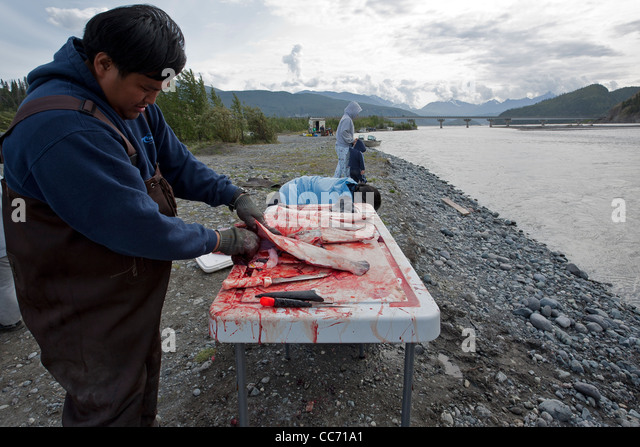chitina women Salmon, chitina alaska, chitina, cooper river red salmon.