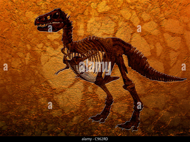 Rex Tyrannosaurus Rex Stock Photos & T Rex Tyrannosaurus Rex Stock ...