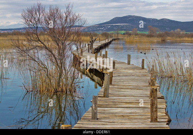Bird croatia stock photos bird croatia stock images alamy vrana lake nature park wooden boardwalk of bird observatory dalmatia croatia stock image sciox Gallery