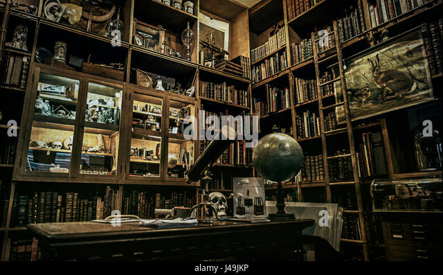 Cabinet Of Curiosities   Paris, France   Stock Image
