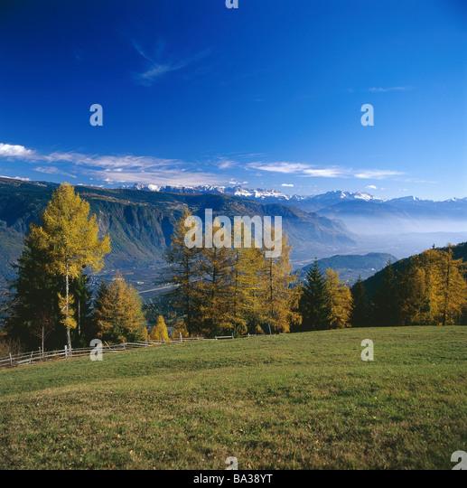 mountain meadow autumn above - photo #2