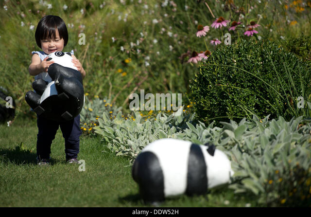 Unique Papier Mache Child Stock Photos  Papier Mache Child Stock Images  With Inspiring A Child Plays With A Panda Bear With Agreeable Victoria Canada Gardens Also Luxury Garden In Addition Garden Centres In Cheltenham And Quick Garden As Well As Cuprinol Garden Wood Preserver Additionally Bok Tower Gardens From Alamycom With   Inspiring Papier Mache Child Stock Photos  Papier Mache Child Stock Images  With Agreeable A Child Plays With A Panda Bear And Unique Victoria Canada Gardens Also Luxury Garden In Addition Garden Centres In Cheltenham From Alamycom