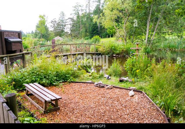 Building a wildlife pond stock photos building a wildlife pond stock images alamy - Build pond wildlife haven ...