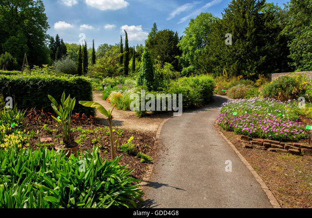Bristol Botanic Gardens Owned And Run By The University Of Bristol UK  Houses A Large Collection