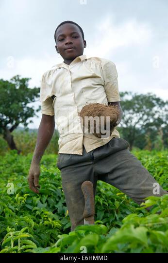 Nigeria Farmers Stock Photos Amp Nigeria Farmers Stock