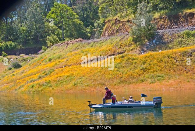 Sierra foothills flowers stock photos sierra foothills for Fish lake ca