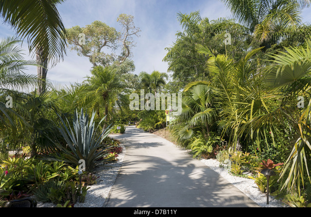 Collier County Stock Photos Collier County Stock Images