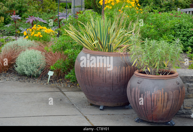 Ceramic Planters Stock Photos Ceramic Planters Stock Images Alamy