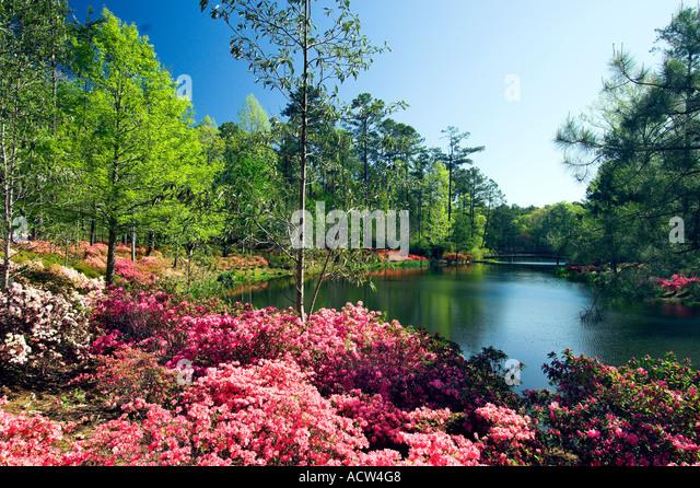 Callaway gardens stock photos callaway gardens stock for Callaway gardens fishing