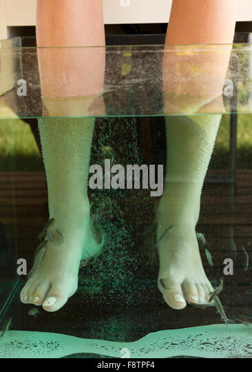 Fish massage stock photos fish massage stock images alamy for Fish spa treatment