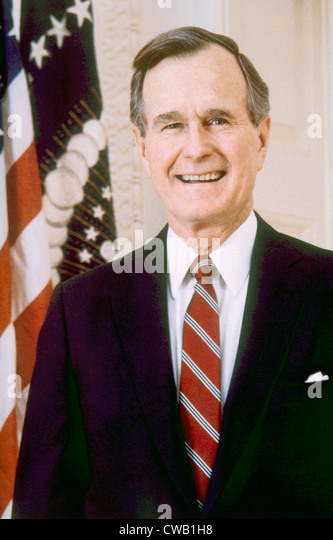 a look at the presidency of george bush 1989 1993 Biographycom explores the political life of george hw bush, the 41st president of the united states and the father of george w bush, the 43rd president.