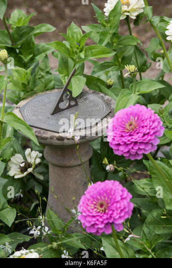 Sundial In A Flower Bed In An English Garden. UK   Stock Image