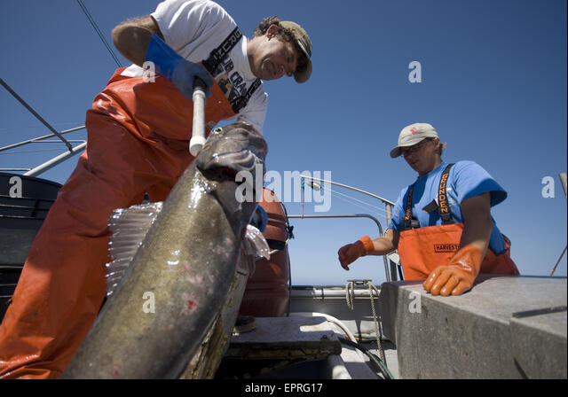 Offshore fishing stock photos offshore fishing stock for Big sur fishing
