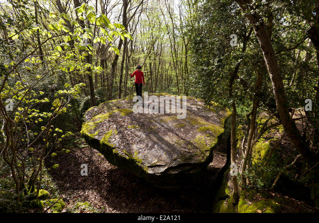 Ronde stock photos ronde stock images alamy for Table ronde 85