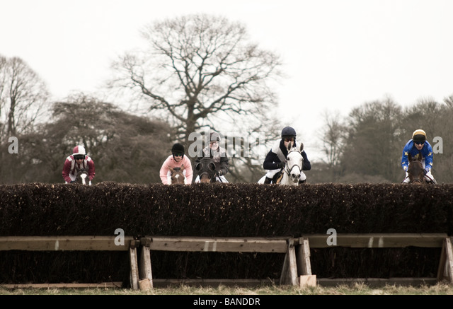 Point To Horse Racing At Dalton Park Holme East Yorkshire