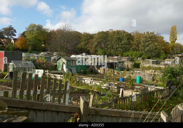 Garden Sheds Yorkshire garden sheds on allotments stock photos & garden sheds on
