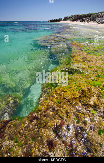 Neptune Islands Marine Park