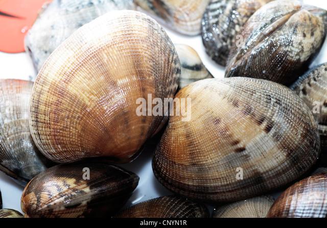 R Clams Healthy Clam Chowder Market St...
