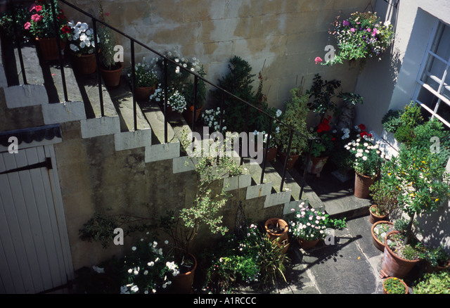 basement garden stock photos basement garden stock images alamy