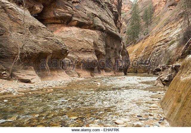 Zion national park slot canyon tours