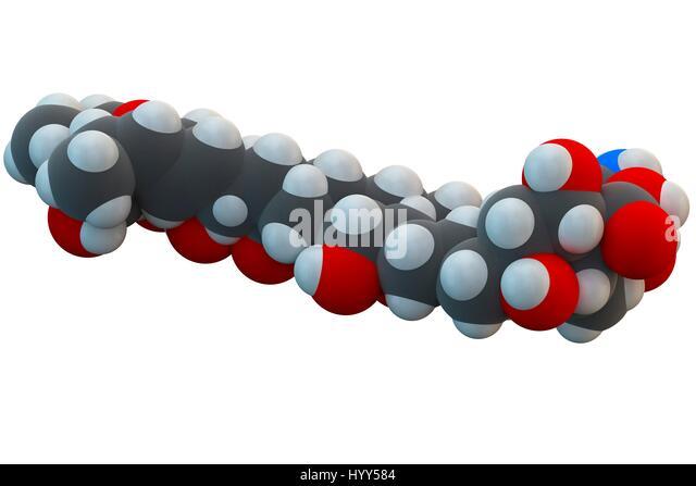 Liposome stock photos liposome stock images alamy for Amphotericin b tablets