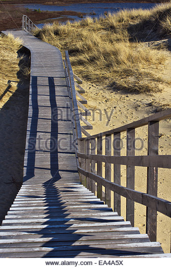 Purpose Planks Walkway : Plank walkway stock photos images