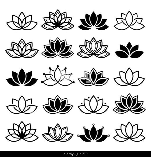 lotus flower design set yoga vector abstract collection stock image