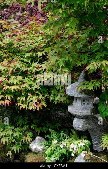 Japanese Tea Garden Show Garden Bloom Phoenix Park Dublin Kate Kurevleva  Designer Harmony Gardens   Stock