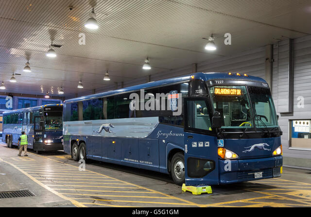 Greyhound Bus Stock Photos Amp Greyhound Bus Stock Images