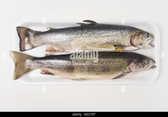 how to cook arctic char with skin on