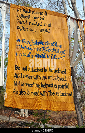 buddhist writings In september 1982, flushed with success from writing and performing in a hit comedy show at the edinburgh festival, i embarked on a part-time screenwriting course in london ten weeks later i was well on the way to becoming a fully-fledged, practising buddhist and no one could have been more.