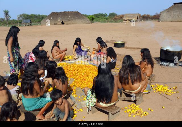 the kalapalo indians The following photograph of the kuarup ceremony at the kalapalo indian village features nude girls dancing in the kuarup ceremony it is from the official web page of the government of the state of mato grosso, brazil.