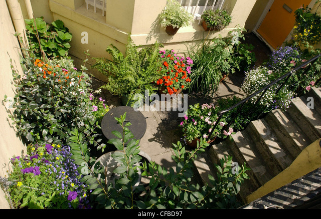 basement garden view stock photos basement garden view stock images