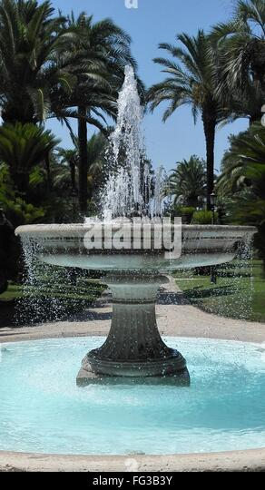 Fountain palm stock photos fountain palm stock images alamy for The fountains palm beach gardens
