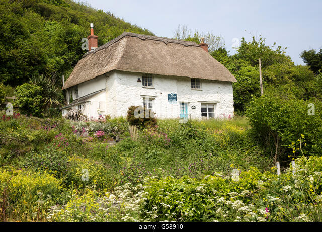 Pretty Thatched Whitewashed Cottage House For Sale Powerstock Lizard Peninsula Cornwall England