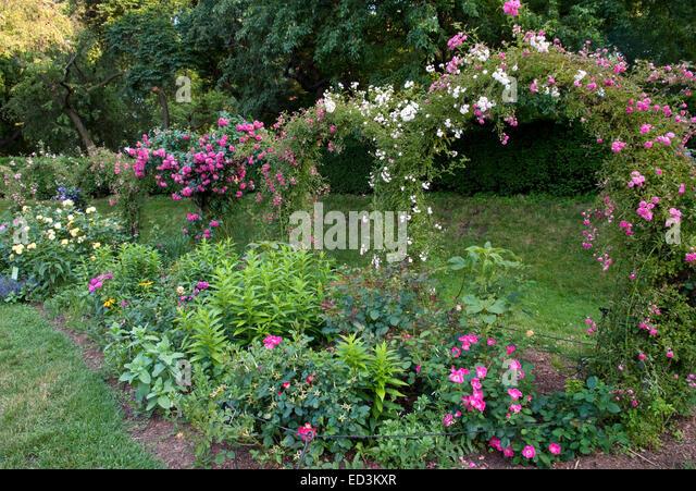 Garden Trellis Border With Roses   Stock Image