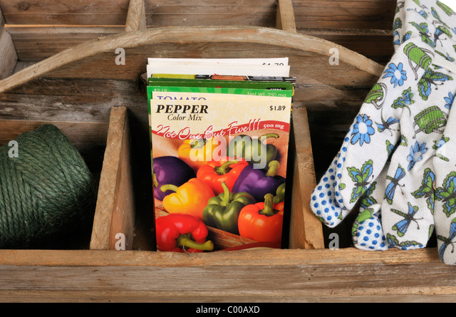 Pepper Vegetable Seed Packets In Wooden Tray With Gardening Gloves And  Twine. Planting Vegetable Seeds