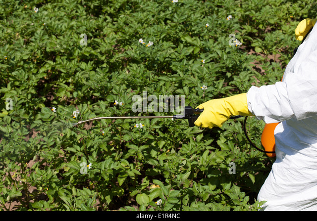 Spraying pesticides stock photos spraying pesticides for Garden pesticides