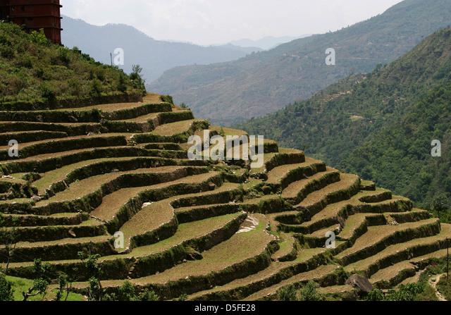 Terrace farming in uttarakhand india stock photos for Terrace farming model