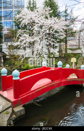 a japanese garden with red gate and bridge in the port of aomori northern japan - Japanese Garden Cherry Blossom Bridge