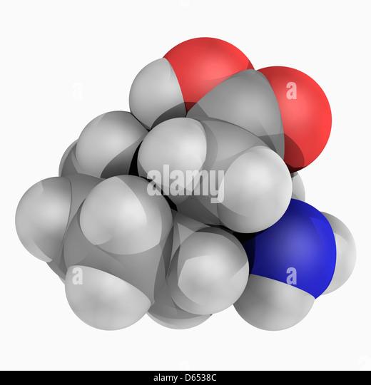 Gabapentin Medication Dosage