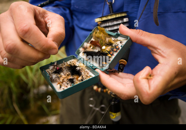 Bait box stock photos bait box stock images alamy for Fishing supplies near me