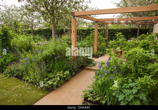 Companion planting stock photos companion planting stock for Garden trees homebase