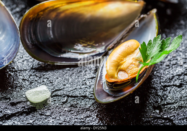 Freshwater Clam Mussel Shell Stock Photos & Freshwater Clam Mussel ...